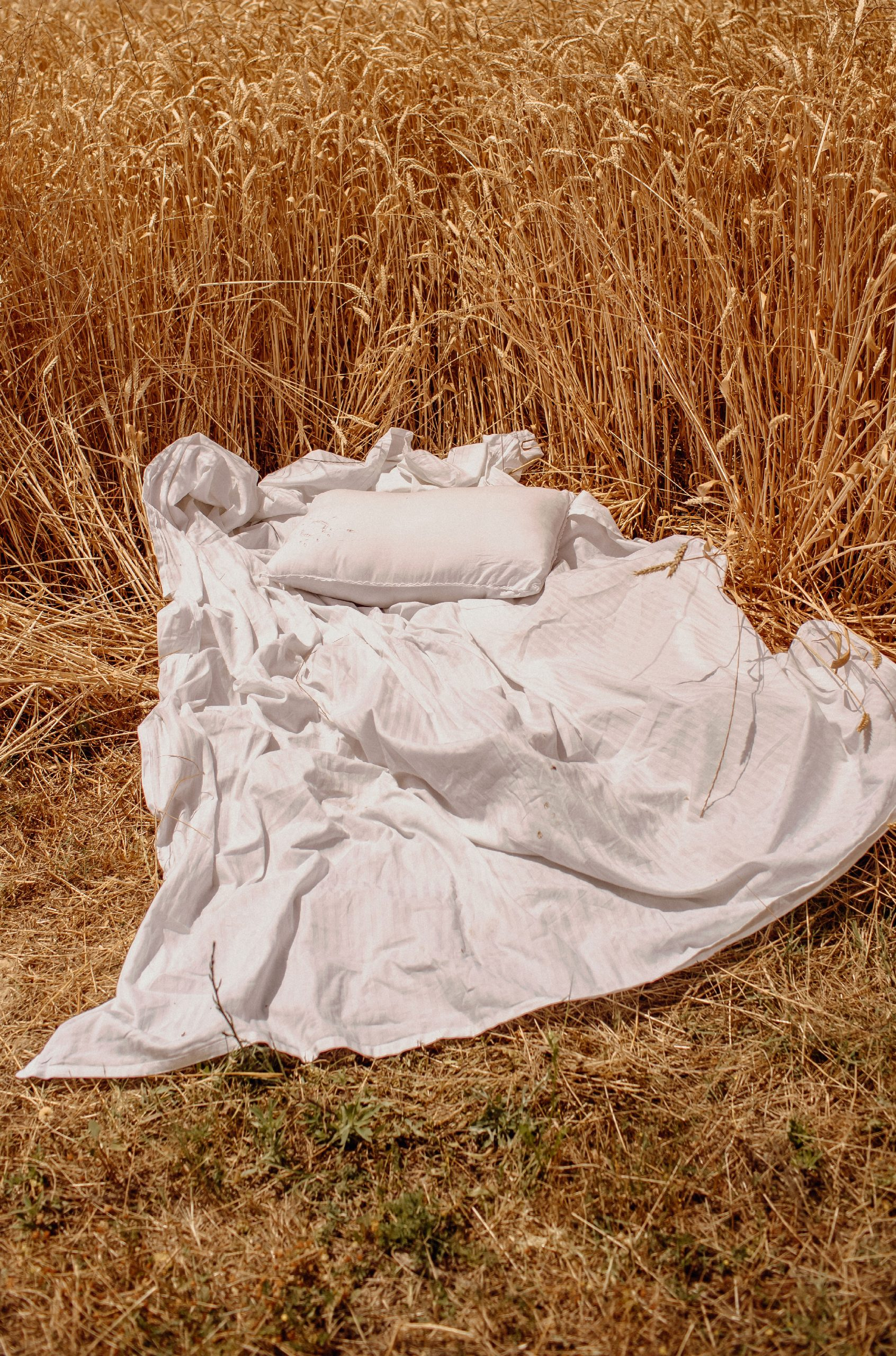 White sheets and pillows in the middle of the field