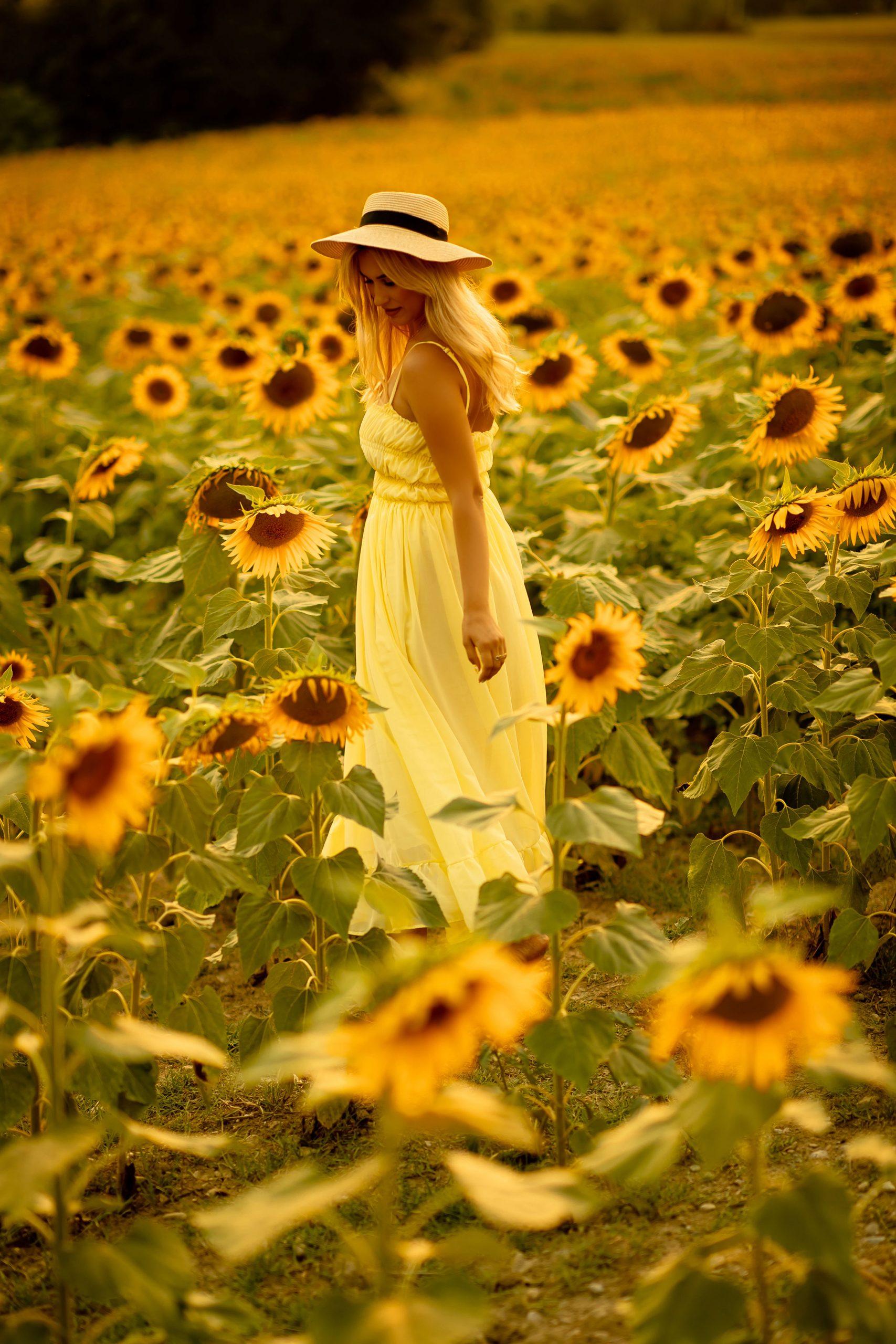 Beautiful girl wearing a yellow chiffon dress on a sunflower field