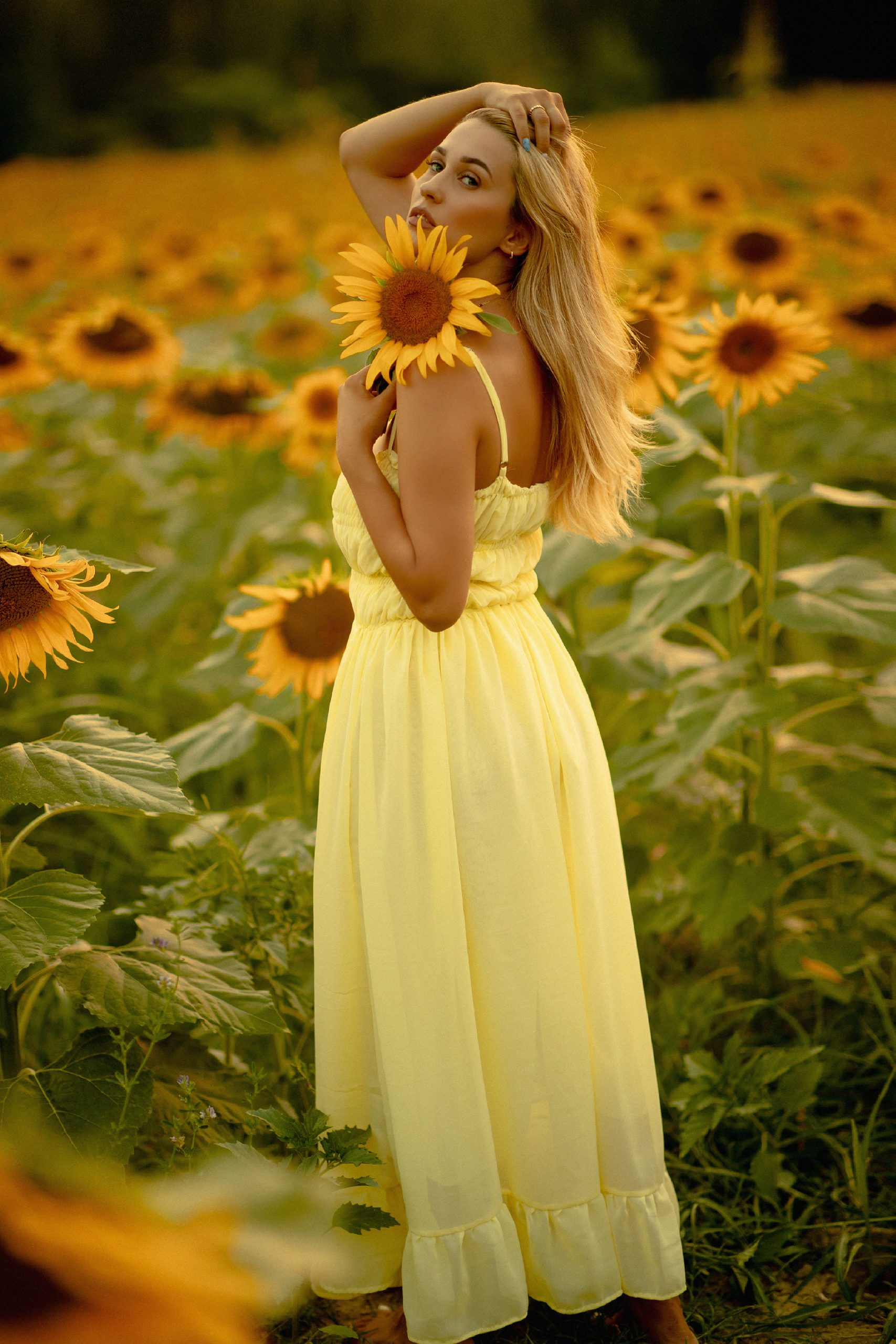 Beautiful posing with a sunflower in her hand