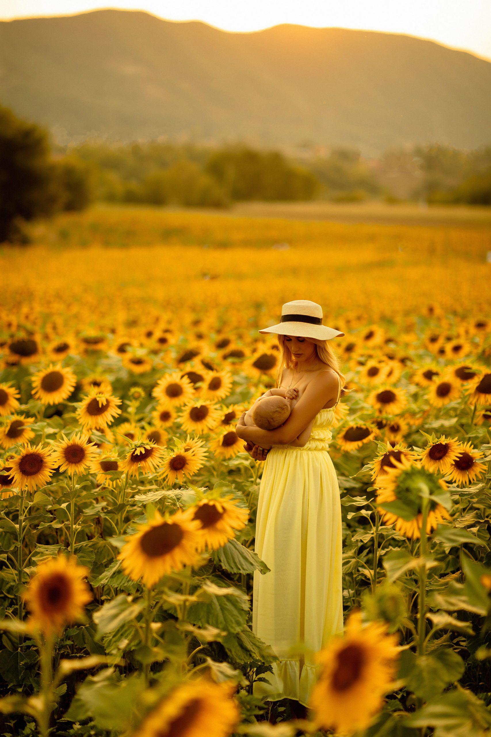 Breastfeeding photography in a sunflower field