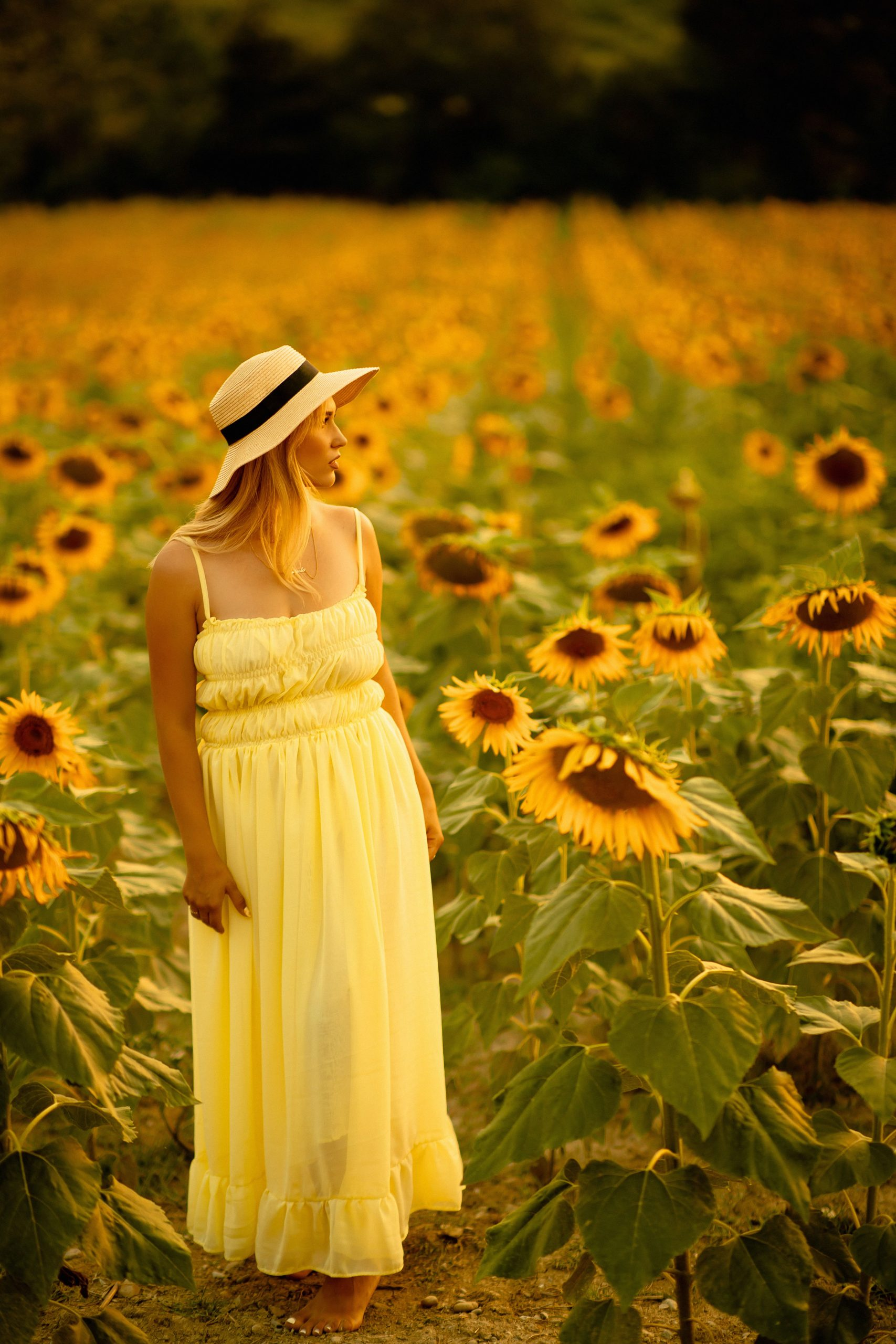 Girl posing in a sunflower field with a yellow dress