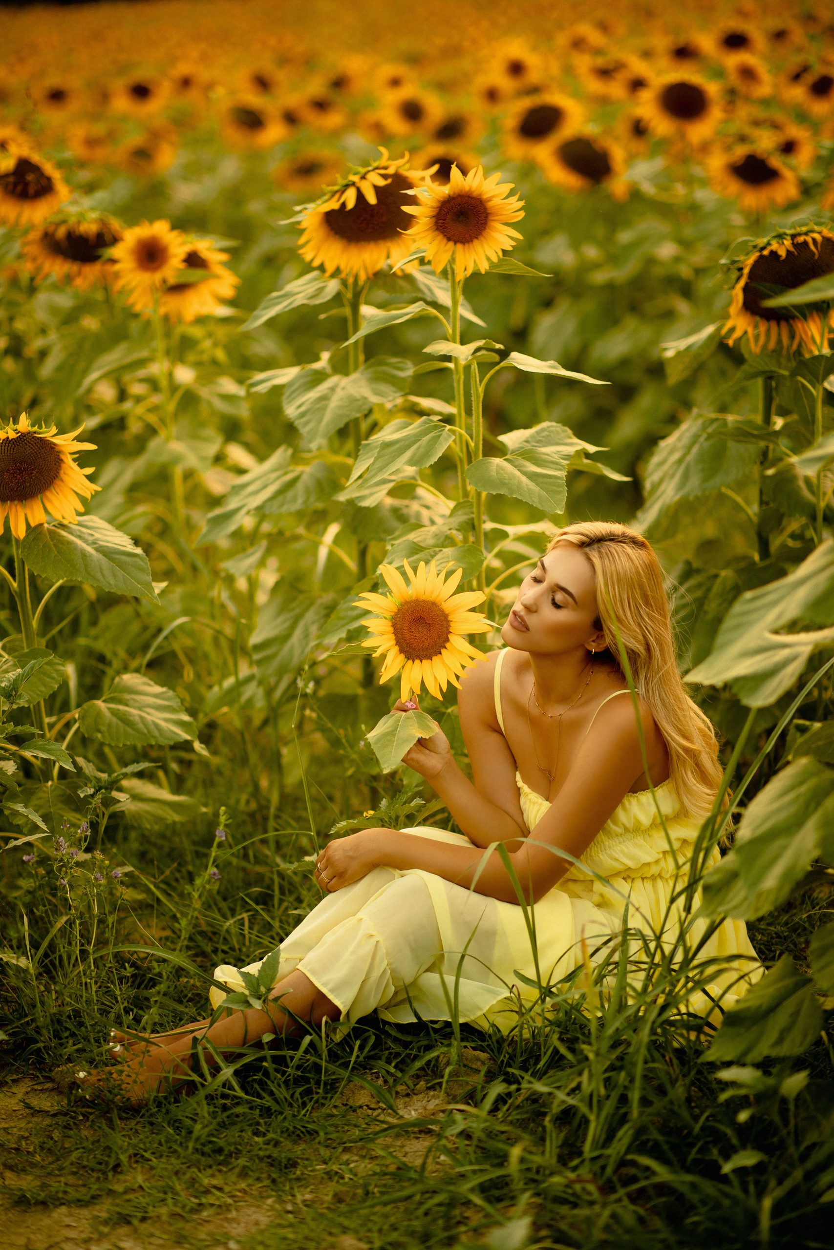 Lady sitting in a sunflower field holding a sunflower