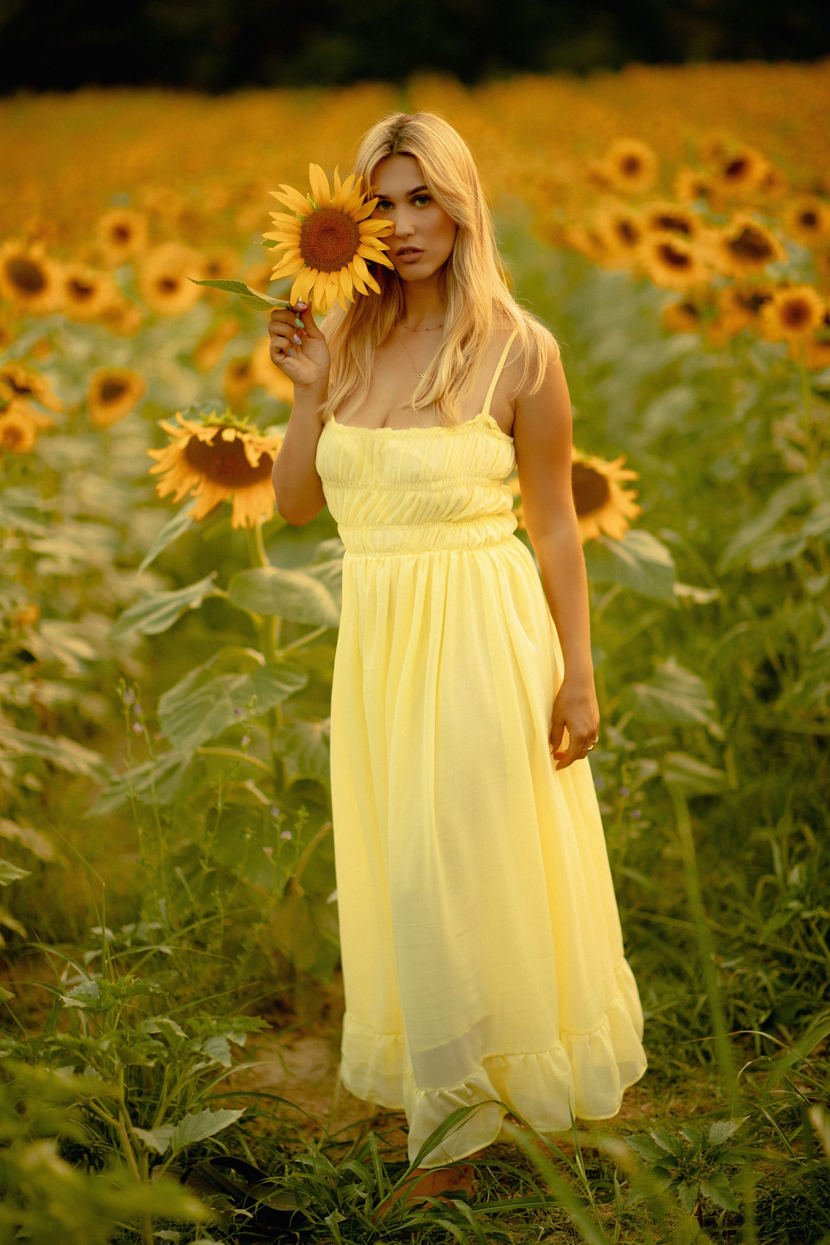 Pretty lady posing with a sunflower in a field